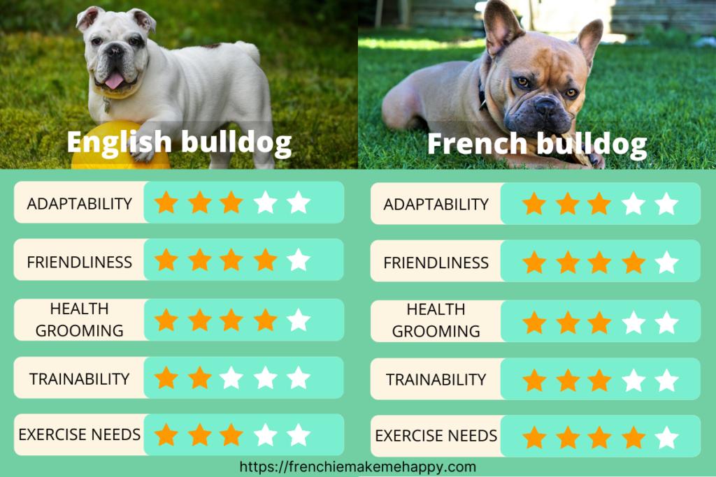 difference-between-English-Bulldog-and-French-Bulldog